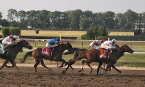 pic - belmont stakes