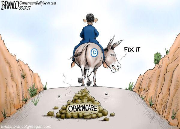 obamacare-stinks