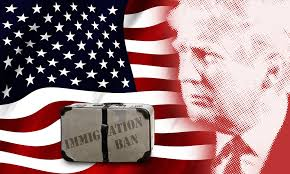 pic - illegal immigration TRUMP & FLAG